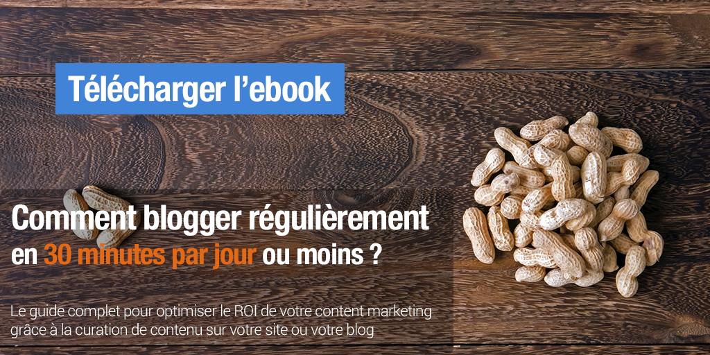 Téléchargez notre ebook - Comment blogger en 30 minutes par jour ou moins ?