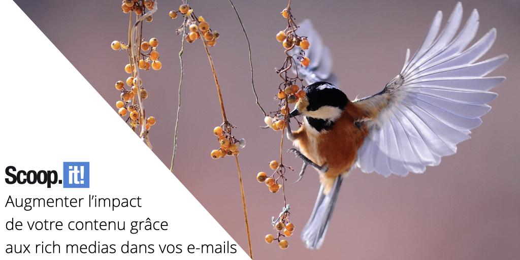 Augmenter l'impact de votre contenu grâce aux rich medias dans vos e-mails
